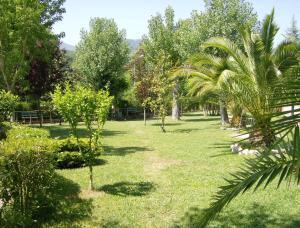 A garden outside Hotel Zi Marianna