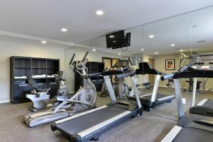 Palestra o centro fitness di Holiday Inn New York-JFK Airport Area, an IHG Hotel