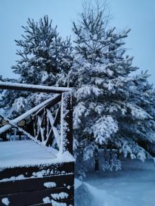 Гостевой дом Елена зимой