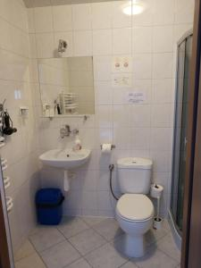 A bathroom at Hotel Górsko