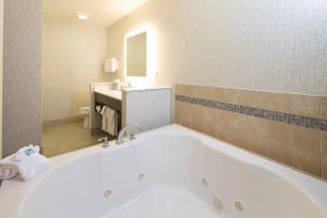 A bathroom at Holiday Inn Express & Suites La Porte, an IHG Hotel
