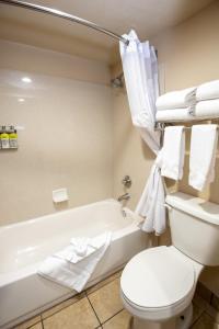 A bathroom at Holiday Inn Express Grand Canyon, an IHG Hotel