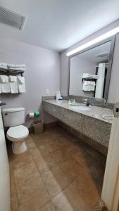 A bathroom at Quality Inn & Suites Near Fairgrounds & Ybor City