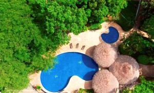 A view of the pool at Hyatt Regency Villahermosa or nearby