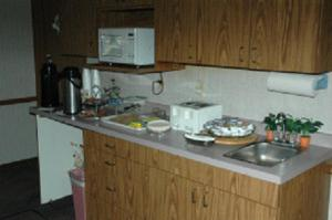 A kitchen or kitchenette at Lakeview Inn