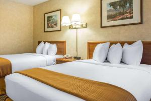 A bed or beds in a room at Quality Inn & Conference Center - Springfield