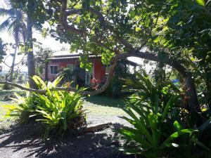 A garden outside Chale da Lu