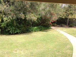 A garden outside Winbi River Resort