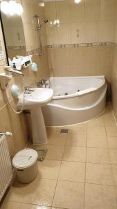 A bathroom at Hotel Fantanita Haiducului