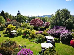 A garden outside Lindeth Howe