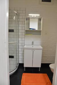 A bathroom at Katona Apartments