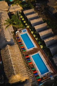 A view of the pool at Tiki Hut Hostel or nearby