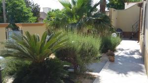 Giardino di Sara Relax Home