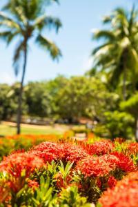 A garden outside Hotel Marinas