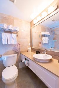 A bathroom at Hamilton Plaza Hotel and Conference Center