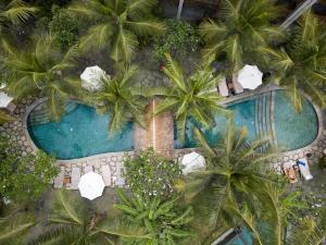 منظر المسبح في ألايا ريزورت أوبود او بالجوار