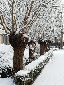 B&B 't Huys van Enaeme зимой