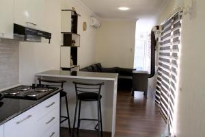 A cozinha ou cozinha compacta de Super Cozy Container Home