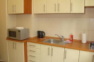 A kitchen or kitchenette at Alex Apartments on Puskinskaya