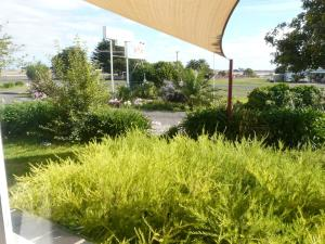A garden outside Lake Bolac Motel
