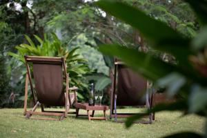 A garden outside Kaliwa Lodge