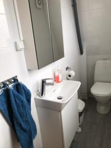 A bathroom at Gävle Bed & Breakfast