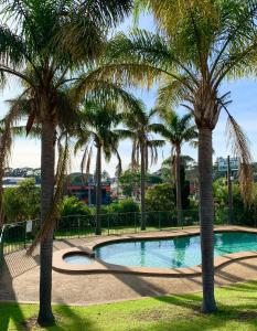 The swimming pool at or near Shellharbour Resort and Conference Centre