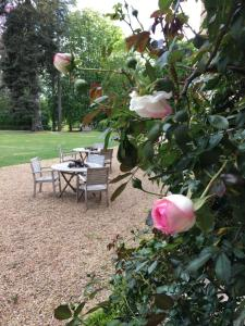 A garden outside Château de Perreux, The Originals Collection (Relais du Silence)
