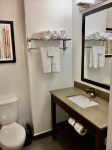A bathroom at Wingate by Wyndham JFK Airport, Far Rockaway NY