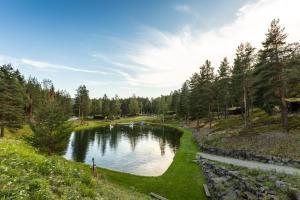 Bassenget på eller i nærheten av Hunderfossen Hotel & Resort