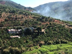 OVi coffee farmstay Đà Lạt