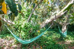 Jardín al aire libre en Hotel Rural Biniarroca - Adults Only