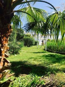 Ein Garten an der Unterkunft La Tramontane