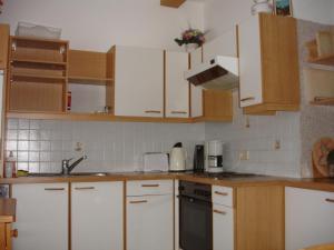 Küche/Küchenzeile in der Unterkunft Apartment Janschitz Gundersheim