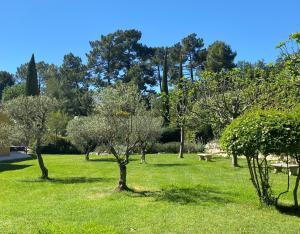 A garden outside Les Sables d'Ocre