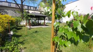 Ogród w obiekcie Apartamenty Patria