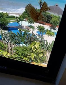 Uma vista da piscina em Atlántico Flat ou nos arredores