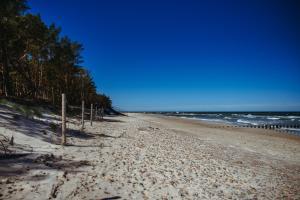 Plaża w ośrodku wypoczynkowym lub w pobliżu