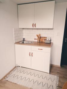 Kuchyňa alebo kuchynka v ubytovaní Apartment Dubnica Prejta 3