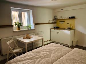 Kuchyň nebo kuchyňský kout v ubytování Ubytování Lucie