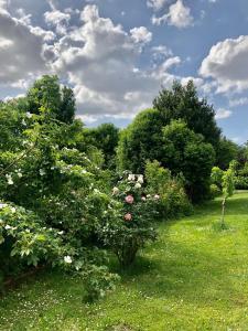 A garden outside B&B la Serenissima