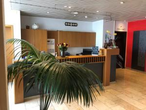 Лобби или стойка регистрации в Zys Hotel