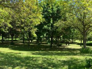 Ein Garten an der Unterkunft Hotel Milleluci