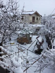 Tbili Sakhli Guest House зимой