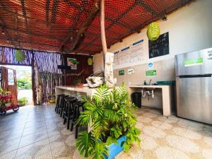 The lobby or reception area at Hostelito Chetumal Hotel + Hostal
