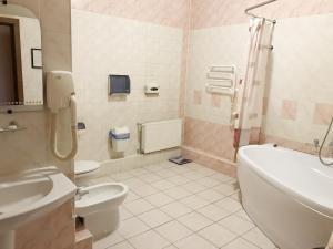 Vonios kambarys apgyvendinimo įstaigoje Hotel Nart