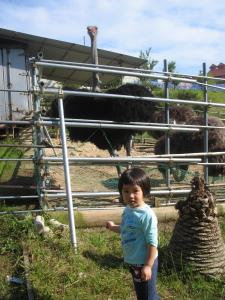 Children staying at Mirai Noen