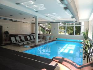 The swimming pool at or near Hotel SPA Arkadia