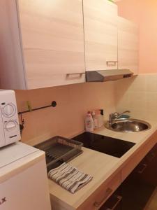 Een keuken of kitchenette bij Apartments Kestenovi Dvori