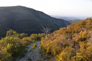 Natural landscape near the inn